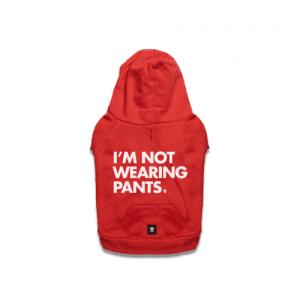 zeedog camisola vermelha